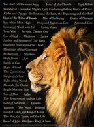 Wall Chart: Lion of Judah: Names of Christ (Laminated) Poster