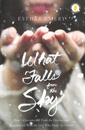 What Falls From the Sky Hardback