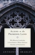 Aliens in the Promised Land Paperback