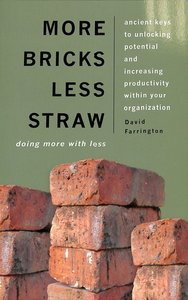 More Bricks Less Straw