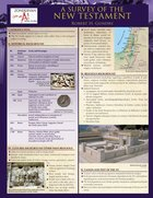 A Survey of the New Testament (6 Laminated Sheets) Chart/card
