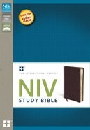 NIV Study Bible Regular Burgundy (Red Letter Edition) Bonded Leather