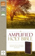 Amplified Holy Bible Indexed Burgundy (Black Letter Edition)