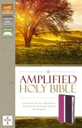 Amplified Holy Bible Dark Orchid/Deep Plum (Black Letter Edition) Premium Imitation Leather