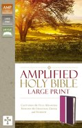 Amplified Holy Bible Large Print Dark Orchid Deep Plum