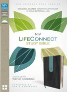 NIV Lifeconnect Study Bible Gray/Blue Indexed (Red Letter Edition)