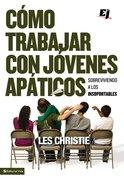 Como Trabajar Con Jovenes Apaticos (How To Work With Young People) Paperback