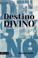 Destino Divino (Soulprint)