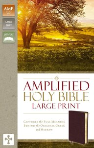 Amplified Holy Bible Large Print Burgundy (Black Letter Edition)