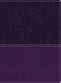 KJV Beautiful Word Bible Large Print Purple 500 Full-Color Illustrated Verses (Red Letter Edition)