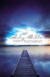 NIV Outreach New Testament Blue Pier