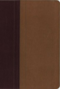 NIV Quest Study Bible Burgundy/Tan Indexed (Black Letter Edition)