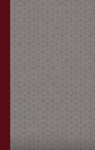 NIV Journal the Word Bible Red/Gray