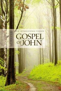 NIV Gospel of John Large Print Tree