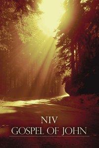 NIV Gospel of John Brown Forest Paperback