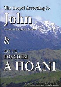 Maori English Parallel Gospel of John Pictoral