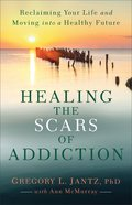 Healing the Scars of Addiction: Reclaiming Your Life and Moving Into a Healthy Future Paperback