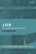 Job An Introduction and Study Guide (T&t Clark Study Guides Series) Paperback
