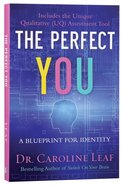 The Perfect You: Blueprint For Identity Paperback
