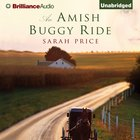 An Amish Buggy Ride eAudio