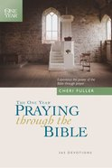 The One Year Praying Through the Bible eBook