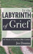 In the Labyrinth of Grief eBook