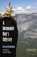 A Mennonite Boy's Odyssey eBook