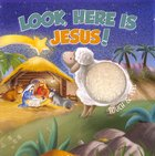 Touch and Feel: Look, Here is Jesus! Board Book