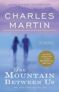 The Mountain Between Us Paperback
