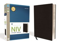 NIV Study Bible Large Print Black (Red Letter Edition)