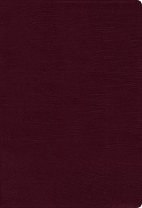 NIV Thinline Bible Burgundy Indexed Red Letter Edition