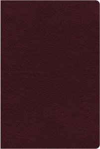 NIV Thinline Reference Bible Indexed Large Print Burgundy (Red Letter Edition)