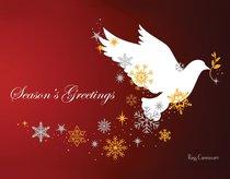 Christmas Boxed Cards: Seasons Greetings Dove, Scripture