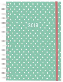 2019 16-Month/Weekly Diary/Planner: Polka Dot, Mint/White, Back to Basics Collection
