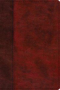 ESV Journaling New Testament Inductive Edition Burgundy/Red