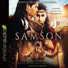 Samson eAudio