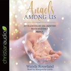 Angels Among Us eAudio