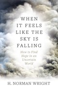 When It Feels Like the Sky is Falling eBook