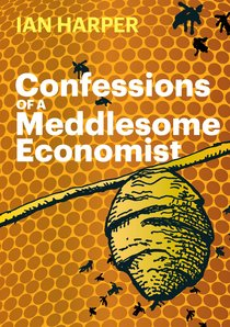 Confessions of a Meddlesome Economist