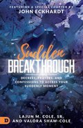 Sudden Breakthrough: Decrees, Prayers, and Confessions to Access Your Suddenly Moment Paperback