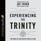 Experiencing the Trinity: The Grace of God For the People of God (Unabridged, 2 Cds) CD