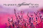Magnet With a Message: My Grace is Sufficient For You (2 Cor 12:9) Novelty