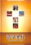 Chinese New Testament Learning Bible Simplified Script
