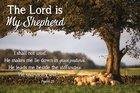 Poster Small: The Lord is My Shepherd Poster