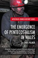 The Emergence of Pentecostalism in Wales: A Historical, Theological Evaluation of the Early Development of the Assemblies of God Denomination in South Paperback