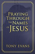 Praying Through the Names of Jesus eBook