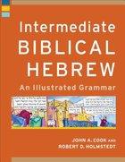 Intermediate Biblical Hebrew: An Illustrated Grammar Paperback