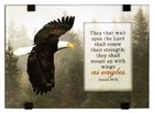 Windows Easeled Glass Plaque: They That Wait Upon the Lord (Isaiah 40:31) Plaque
