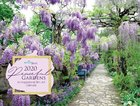 2020 Wall Calendar: Peaceful Gardens Calendar