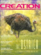 Cen Magazine 2019 #04: Oct-Dec Creation Magazine Paperback